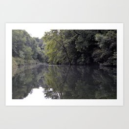 Pond in the Forest Art Print