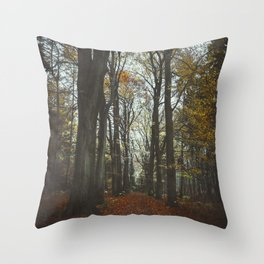 fall alley Throw Pillow