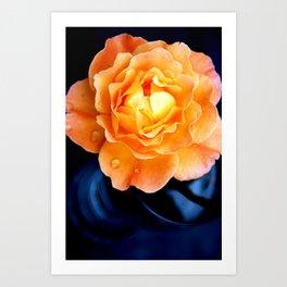 The Orange Rose Art Print
