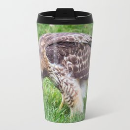 A Red-Tailed Hawk Eating a Caterpillar Travel Mug