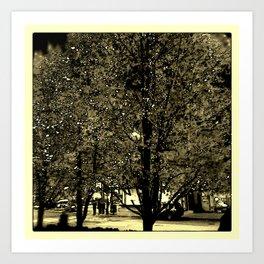 Tara Trees #2 Art Print