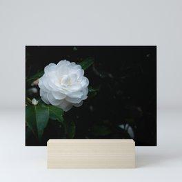 Blissful Garden  Mini Art Print