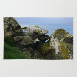 Lichen Covered Rocks in Front of the Blue Horizon Rug