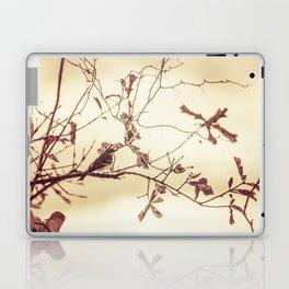 Lonely Bird Sunset Laptop & iPad Skin