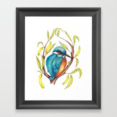 Kingfisher on Willow Framed Art Print