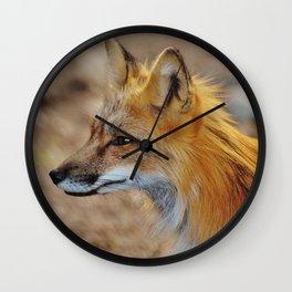 Inquisitive Mr. Fox Wall Clock