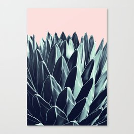 Agave Chic #6 #succulent #decor #art #society6 Canvas Print