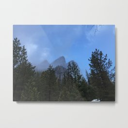 The Blue Brothers Metal Print
