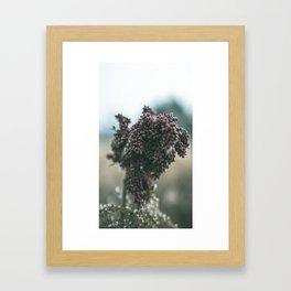 The Neutral Seed Framed Art Print