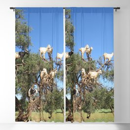 Goats in a tree Blackout Curtain