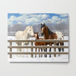 White Bay Appaoosa Horses In Snow Metal Print