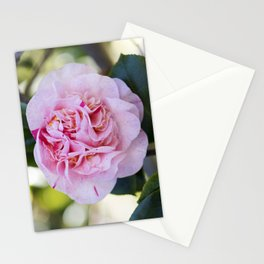 Strawberry Blonde Camellia Bloom Stationery Cards