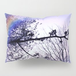 A Day For A Rainbow Pillow Sham