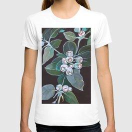 Gumnuts T-shirt