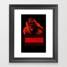 Endangered Gorilla Framed Art Print
