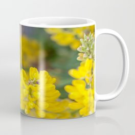 Ladybug in a Yellow Lupin, Dunedin, New Zealand Coffee Mug