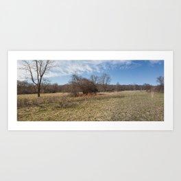 Spring Forest Field Art Print