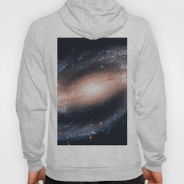 Spiral galaxy in the constellation Eridanus NGC 1300 Hoody