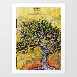Canadian Pine Art Print