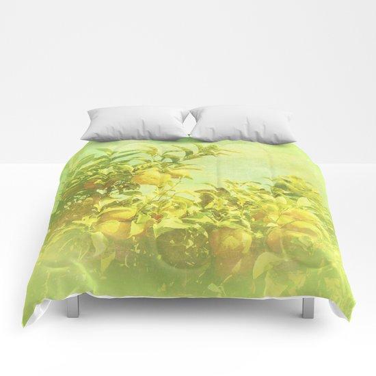 Mandarine Tree Comforters