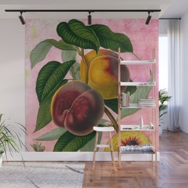Vintage Botanical Collage, Bradford Peach Wall Mural