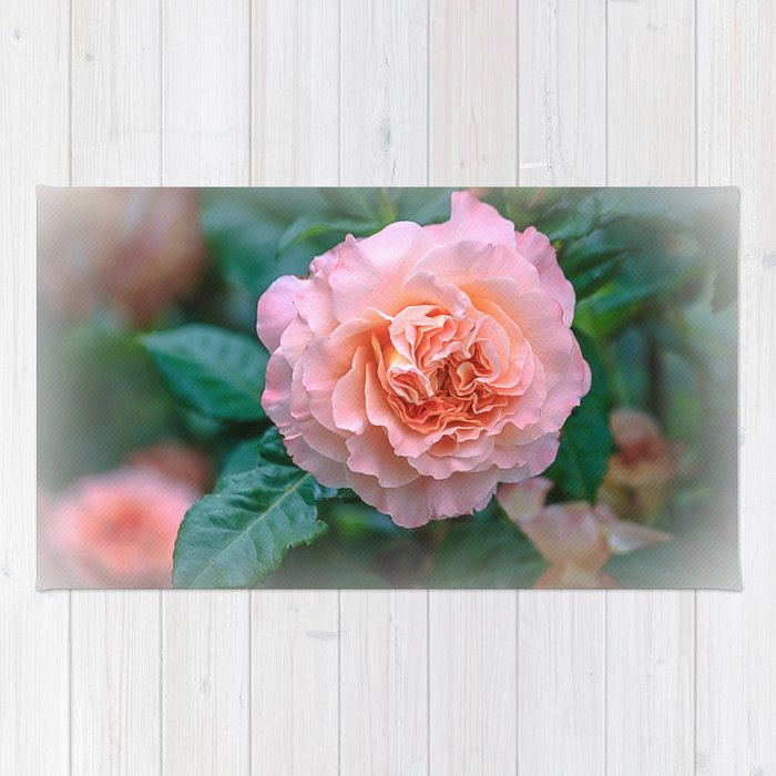 Beauty of a rose Rug