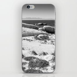 Penguin colony on Boulders Beach - Cape Town, South Africa iPhone Skin