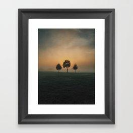 3 Trees Framed Art Print