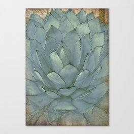 Agave Succulent Cactus Canvas Print