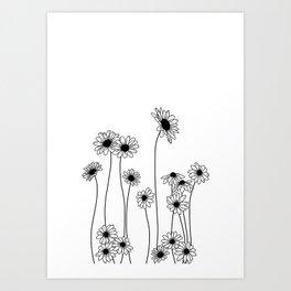 Minimal line drawing of daisy flowers Art Print
