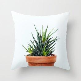 Zebra Plant Throw Pillow