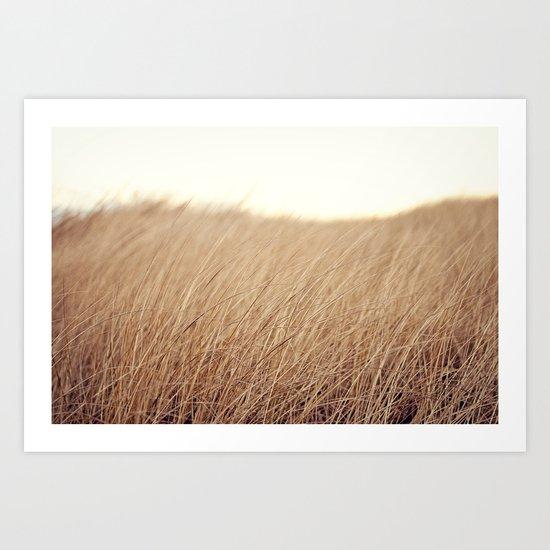 Golden Field Art Print