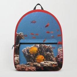 Soma bay Fish Backpack