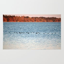 American Coots Crossing Lake Rug