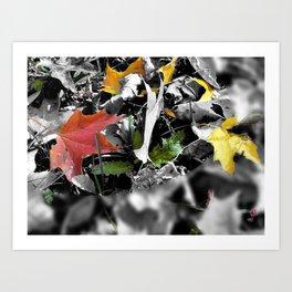 colors in contrast Art Print
