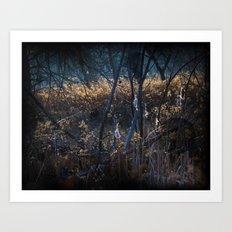 Swampy Field Forest Art Print