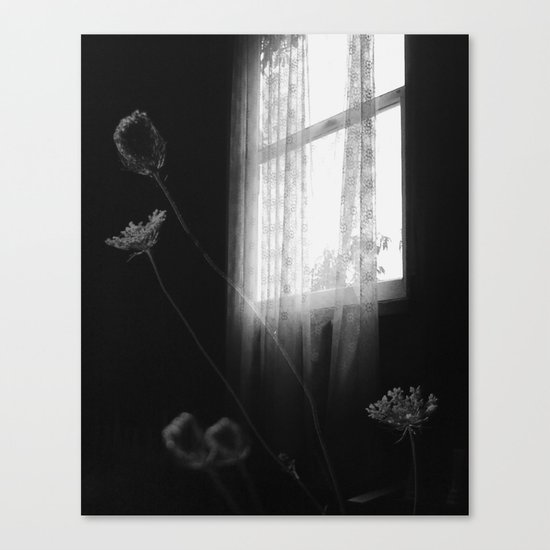 Window Flowers Canvas Print