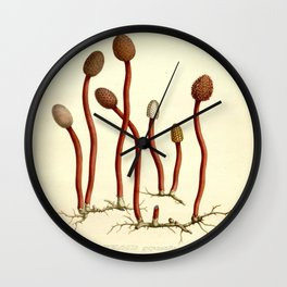 Vintage Mushroom Scientific Illustration Wall Clock