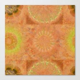 Lunular Balance Flowers  ID:16165-051446-23480 Canvas Print