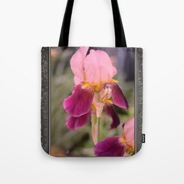 Tall Bearded Iris named Indian Chief Tote Bag