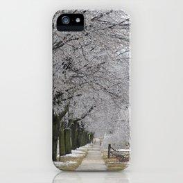 Icestorm III iPhone Case