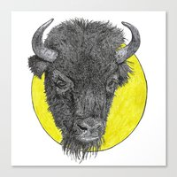 bison Canvas Prints featuring Bison by Triple_S_Art
