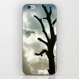 The Hanging Tree iPhone Skin