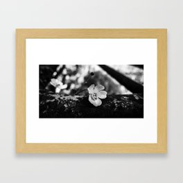 Pillow Framed Art Print