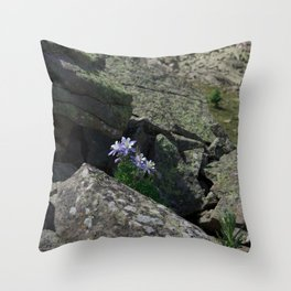 Columbines on a Rock Slide Throw Pillow