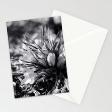 Sunlit Crocus in Black and White Stationery Cards