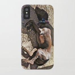 Sleepy Alaska iPhone Case