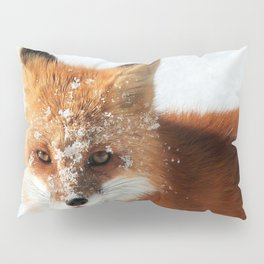 Snowy Faced Cheeky Fox with Tongue Out Pillow Sham