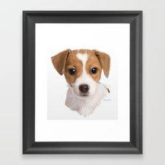 Jack Russell Terrier Pup Framed Art Print