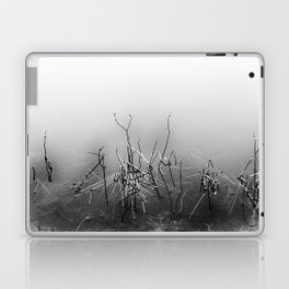 Echoes Of Reeds 4 Laptop & iPad Skin